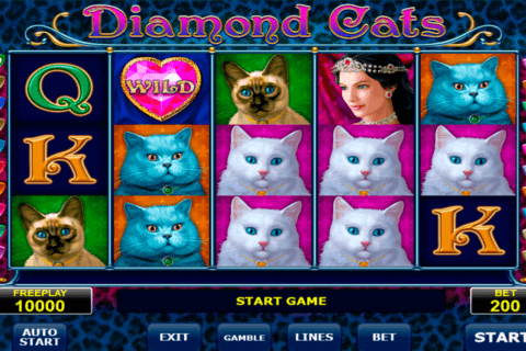 diamond cats amatic آلة السلوت