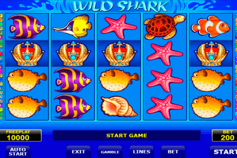 wild shark amatic آلة السلوت